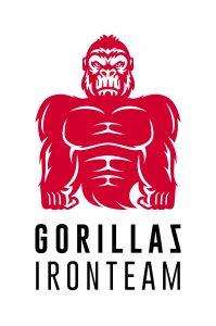 Gorillaz Iron Team